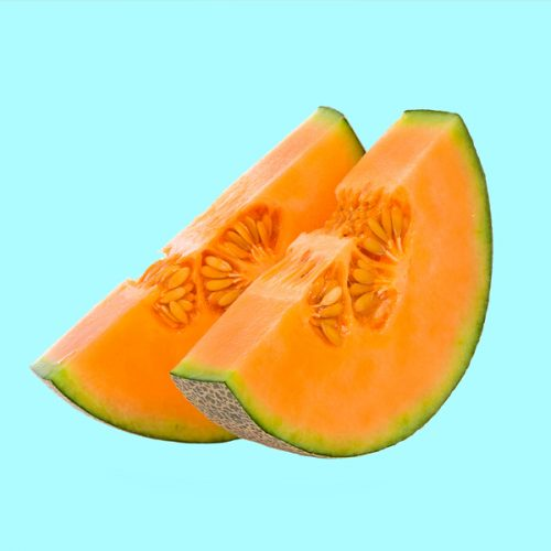 melon-test-4